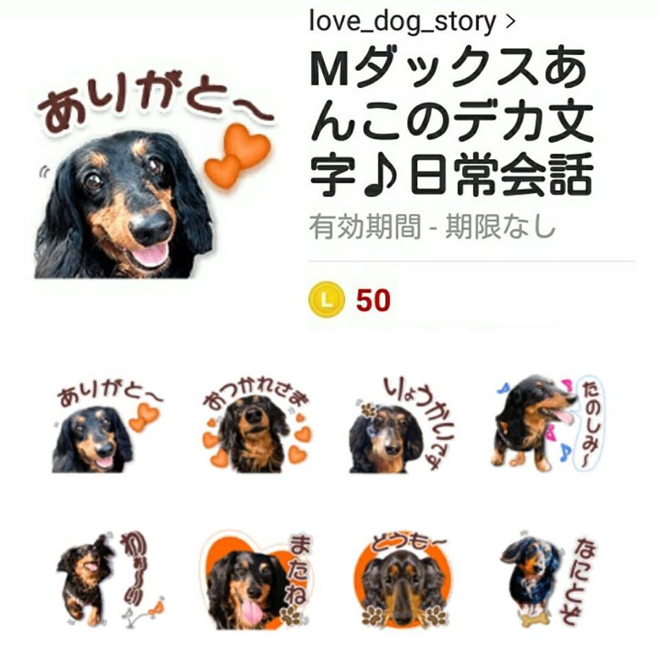 ミニチュアダックス・あんちゃん LINEスタンプ制作