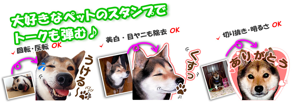 ペットの画像を加工修正してLINEスタンプを制作します!